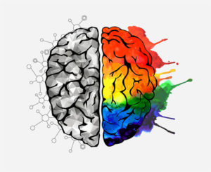 find best nootropics in 2019 that can help you become smarter more smart drugs to boost cognitive functions of your brain and increase memory and attention span